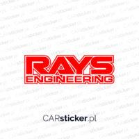 Rays2_logo (1)
