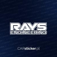 Rays2_logo (4)