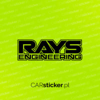 Rays2_logo (5)