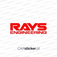Rays_logo (1)