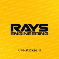 Rays_logo (3)