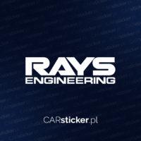 Rays_logo (4)