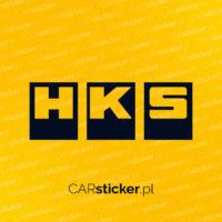 hks_logo (4)