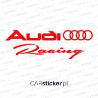 Audi_racing (1)