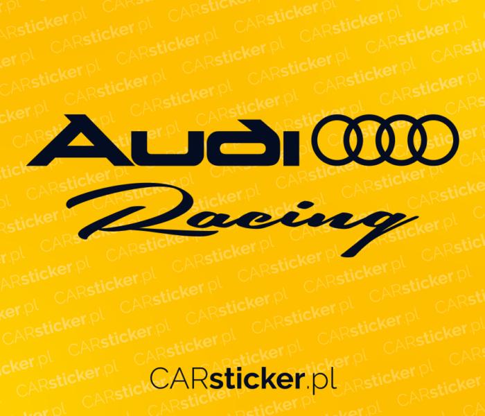 Audi_racing (3)