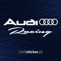 Audi_racing (4)