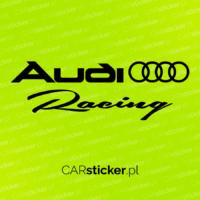 Audi_racing (5)
