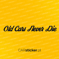old_cars_never_die (3)
