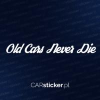 old_cars_never_die (4)