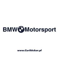 bmw_motorsport (1)