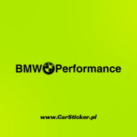 bmw_performance (4)