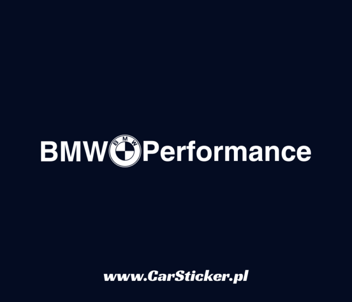 bmw_performance (5)