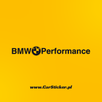 bmw_performance (6)
