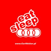 eat-sleep-audi